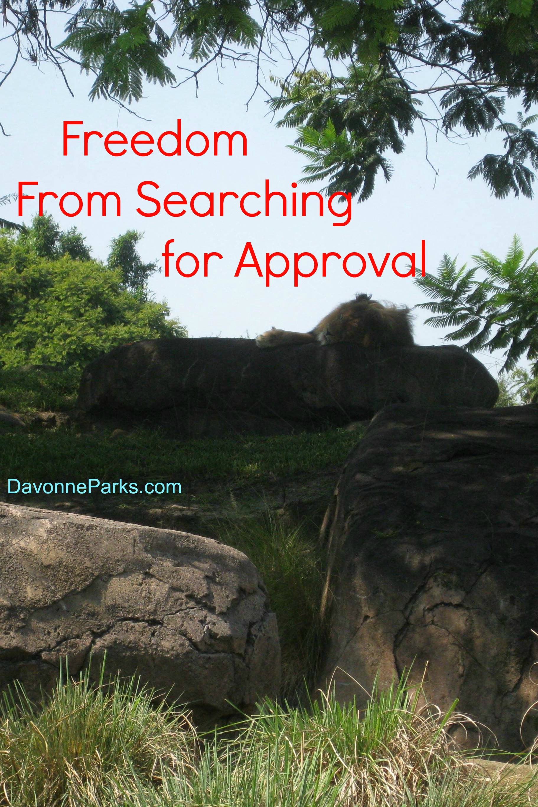 Freedom from Searching for Approval