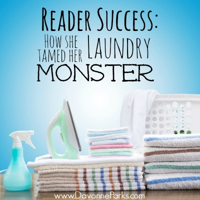 LaundryTaming